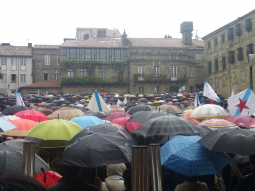 0348295001242566393-manifestacion-polo-dereito-a-vivirmos-en-galego